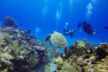 Une plongée dans les meilleures destinations du monde