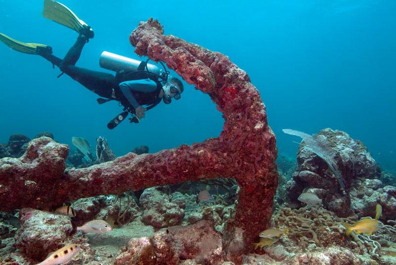 Plongée à Tobago