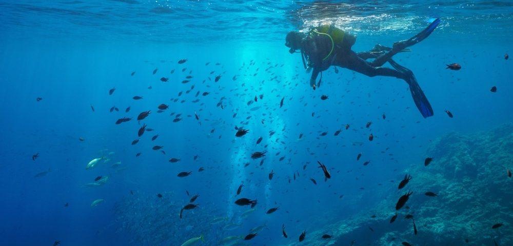 faire de la plongée en Corse.